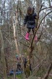 在木头的女孩上升的树 库存照片