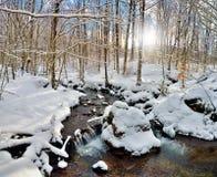 在木头的小河在冬天 免版税库存图片