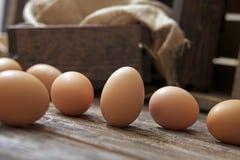 在木头的有机鸡蛋 免版税库存图片