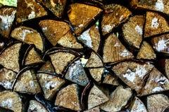 在木头的木头 库存照片