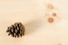 在木头的杉木锥体 免版税库存照片