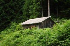 在木头的村庄 免版税库存照片