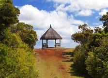 在木头的树荫处,在一个晴天停放黑河峡谷。毛里求斯 免版税库存照片