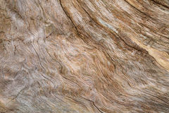 在木头的波浪样式 免版税库存图片
