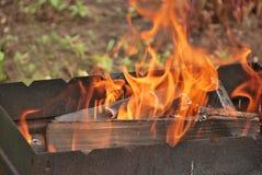 在木柴的火 免版税库存照片