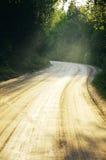 在木头的石渣路 免版税库存图片