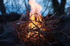 在木头的篝火与湖 库存照片