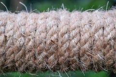 在木头的米黄绳索 库存图片