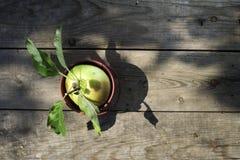 在木头的苹果计算机 库存照片