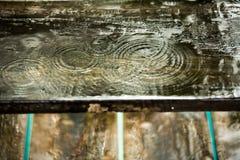 在木头的雨珠 免版税库存图片