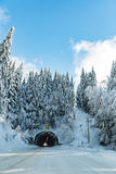 在木头的雪道在美国 免版税库存照片