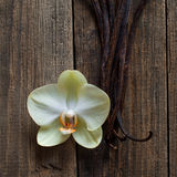在木头的香草棍子和花 免版税库存照片