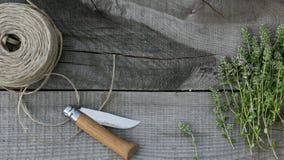 在木头的麝香草 库存照片