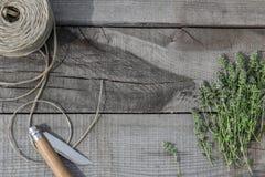 在木头的麝香草 库存图片