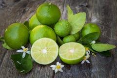在木头的绿色石灰柠檬 免版税库存图片