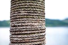 在木头的绳索 库存照片
