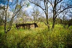 在木头的carbin 免版税库存照片