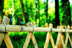 在木头附近的竹篱芭在春天 免版税库存照片