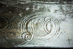 在木头,迷离的雨珠 免版税库存照片