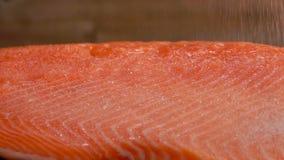 在未加工的三文鱼内圆角撒布的盐特写镜头 影视素材