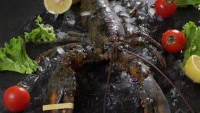 在未加工的螃蟹和各种各样的鱼背景的活龙虾在冰 股票录像