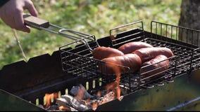 在未打开的火的烤肉 夏天野餐在国家 股票录像