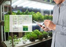 在未来派概念,农夫用途技术t的聪明的农业 免版税图库摄影