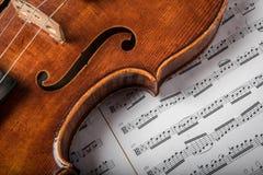 在本文的中提琴 免版税图库摄影