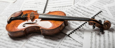 在本文的中提琴 库存图片