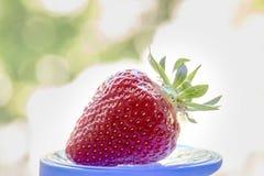 在杂色的背景的草莓 免版税库存照片
