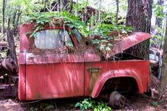 在杂草盖的红色推托提取 库存图片