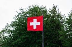 在杆的瑞士旗子 库存图片