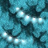 在杉木分支的圣诞灯 库存图片