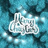 在杉木分支的圣诞灯 免版税库存照片