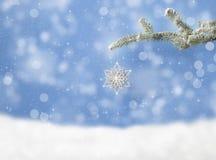 在杉木分支的圣诞节雪花 库存照片