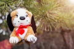 在杉木分支的长毛绒狗 免版税库存图片