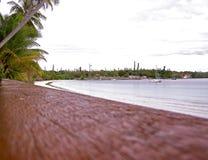 在杉木小岛的海滩  图库摄影
