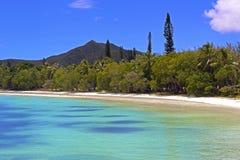 在杉木小岛,新喀里多尼亚的热带海滩 免版税库存照片
