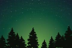 在杉木森林上的美丽的繁星之夜天空,传染媒介以图例解释者 免版税库存图片