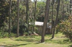 在杉木森林围拢的山的木客舱 库存照片