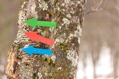 在杉木的五颜六色的箭头 免版税库存照片