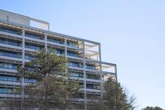 在杉树之外的空白露台的大厦 库存图片