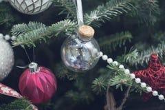 在杉树的一个玻璃球分支 免版税库存照片