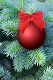 在杉树的红色圣诞节中看不中用的物品 库存图片
