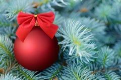 在杉树的红色圣诞节中看不中用的物品 免版税库存图片