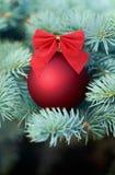 在杉树的红色圣诞节中看不中用的物品 库存照片