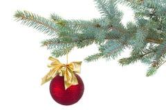 在杉树的红色圣诞节球装饰 免版税库存照片