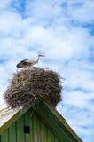 在村庄房子屋顶的鹳天空背景的  免版税库存图片