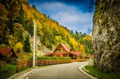 在村庄房子附近的秋天颜色 免版税库存图片