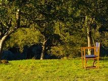 在村庄新鲜空气家庭的早晨 免版税库存图片